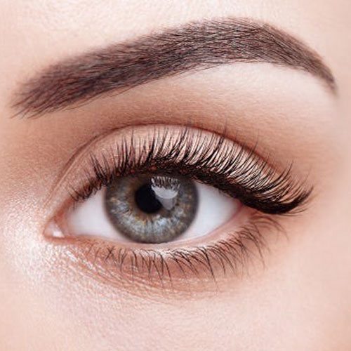 Accredited Lash Lift & Tinting Course